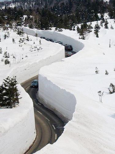 Рекордный снегопад зафиксирован в Москве: высота снежного покрова достигает 50 см - Цензор.НЕТ 9343