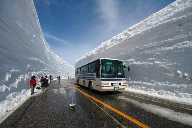 Рекордный снегопад зафиксирован в Москве: высота снежного покрова достигает 50 см - Цензор.НЕТ 5994
