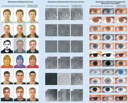персональные электронные карты призывников будут содержать их биометрические данные