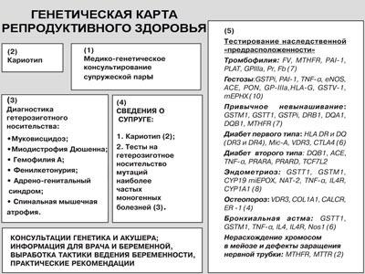 паспорт здоровья студента образец заполнения - фото 2
