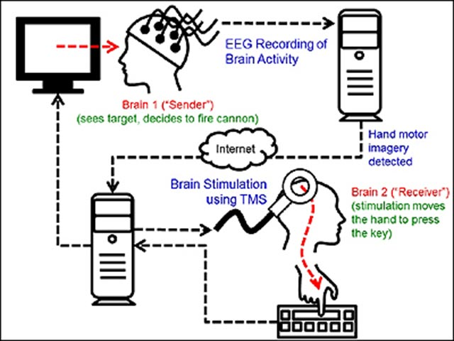 по прямой связи мозг-мозг